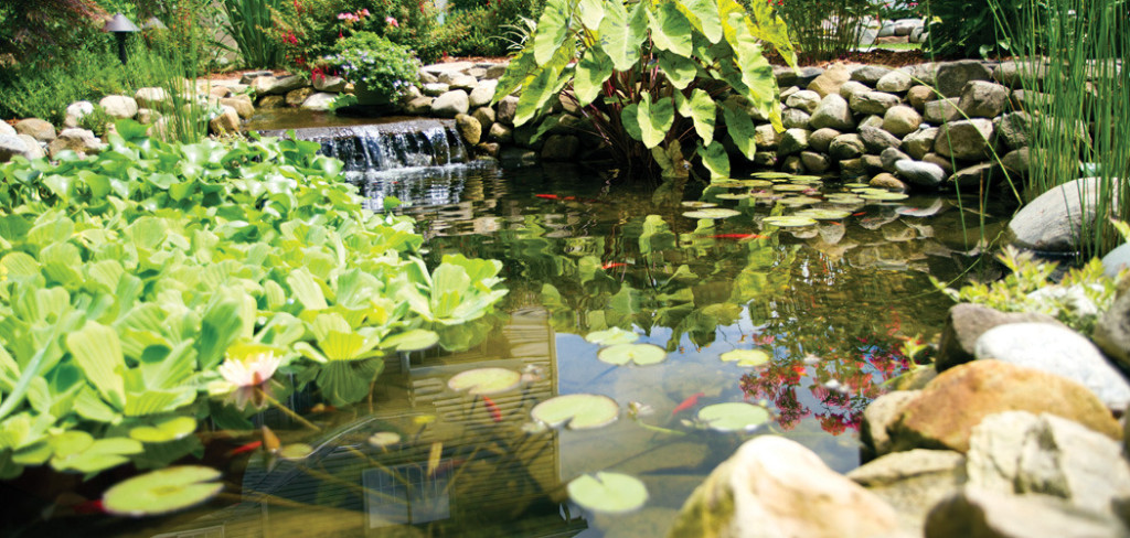 watergarden-2-1-1024x488